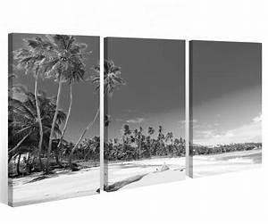 Palme Schwarz Weiß : leinwand 3 tlg schwarz wei meer palmen palme strand landschaft bilder 9a394 leinwandbilder ~ Eleganceandgraceweddings.com Haus und Dekorationen