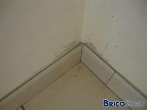Pose Plinthe Carrelage : plinthes coup es en biseau ou non ~ Premium-room.com Idées de Décoration