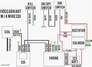 6 Pin Cdi Wiring Diagram  U2014 Untpikapps