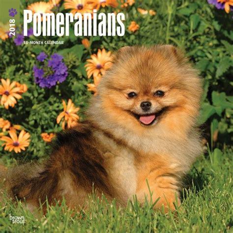 pomeranians dogdays calendar puzzle app iphone ipad