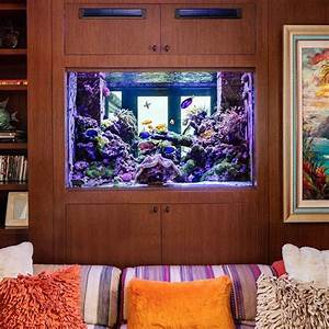 Every Great Room Deserves A Great Aquarium In 2020