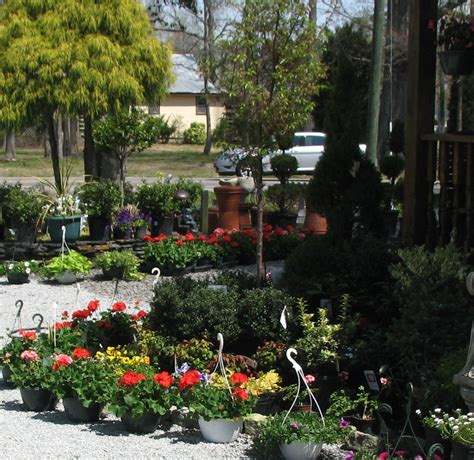 garden ridge chesapeake garden center chesapeake va garden ftempo