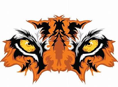 Wild Animal Tiger Tigers Clipart Mascot Eyes