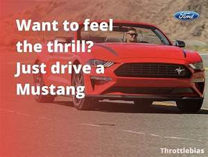 76+ Mustang Quotes & Sayings [Mustang Captions 2020] in 2020 | Mustang quotes, Mustang, Car guy ...