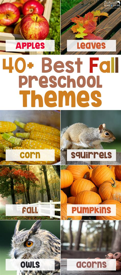 preschool fall theme 40 best fall preschool themes and activities 174