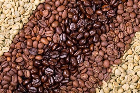 The coffee it brews is dark. 1 Minute Test: How to Tell If Your Coffee Beans Are Fresh - Ecooe Life