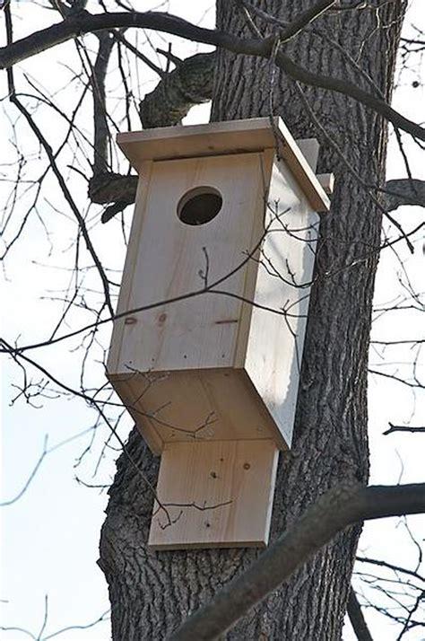 a screech owl nesting box page 2