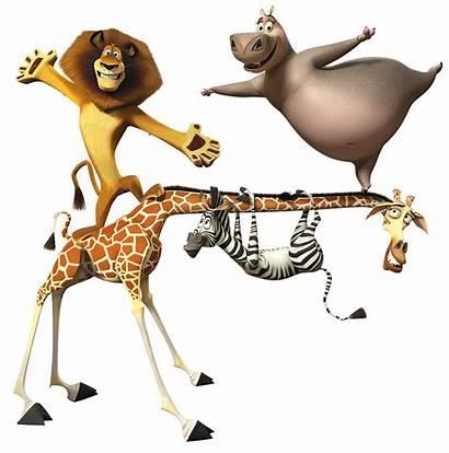 Madagascar Clipart Characters Main Getdrawings