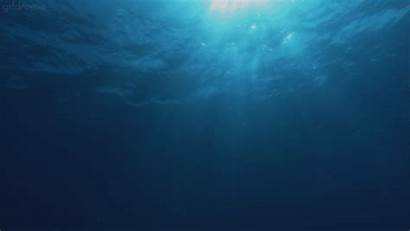Water Ocean Animated Under Sea Immerse Nature