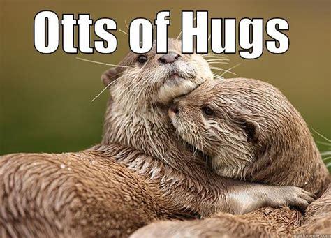 Otter Love Meme - otter hugs quickmeme