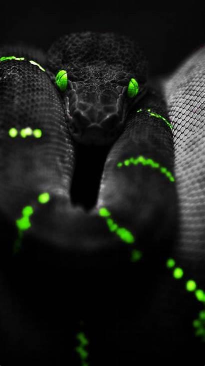 Iphone Wallpapers Snake Background Badass Dark Backgrounds