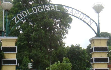 Zoological Garden Zoological Garden Alipore