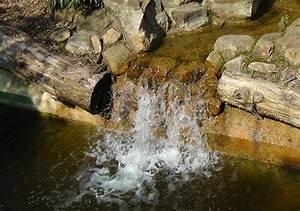 Kleiner Teich Mit Wasserfall : teich vor hitze sch tzen sauerstoff f r fische gartentotal shop ~ Whattoseeinmadrid.com Haus und Dekorationen