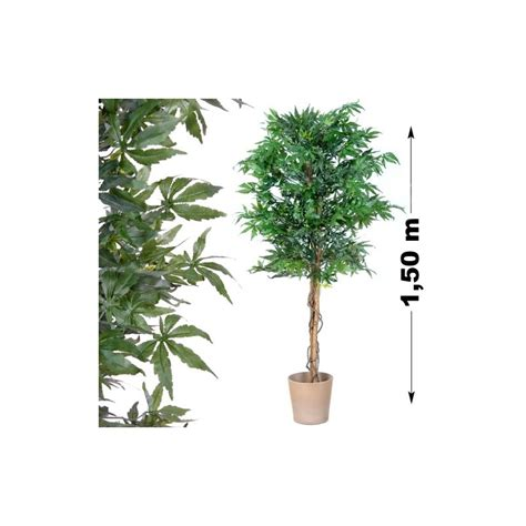 balance cuisine professionnelle plant cannabis artificiel marijuana artificielle chanvre