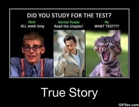 Study Memes - study