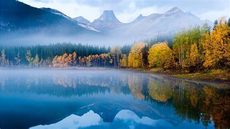 壁纸 秋天浓雾森林湖的早晨 1920x1200 Hd 高清壁纸, 图片, 照片