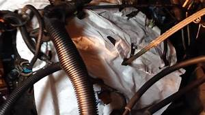 Removal Of Various Wire Harnesses Gm Chevy Tahoe Vortec Ls