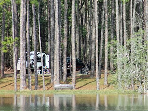 campground pond sand pine log forest state fl ebro star area camping april recreation campendium