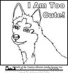 Cute Husky Coloring Pages