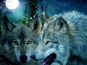 Beautiful Wolf Wallpapers - Wallpaper Cave