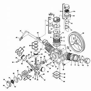 Champion 3z170 Pump Parts  Champion Pump Parts