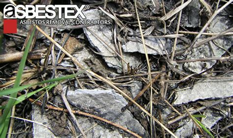 asbestex asbestos contaminated soil removal services