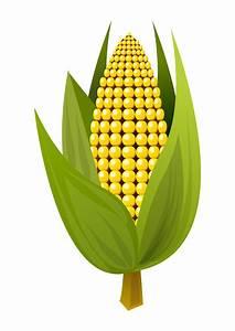 Clipart - Corn