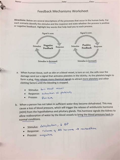 reproducible student worksheet briefencounters