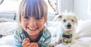Haustiere Für Kinder : von hund bis vogel welche haustiere sind f r kinder geeignet ~ Orissabook.com Haus und Dekorationen