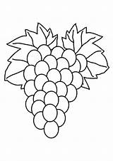 Grapes Coloring Pages Fruit Wine Printable Drawing Ape Colouring Purple Getcolorings Getdrawings Colorluna sketch template