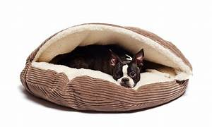 Corduroy cave pet bed groupon goods for Dog bed deals
