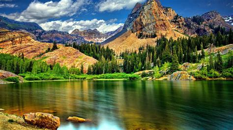 landscape nature rocky mountains  jagged peaks pine