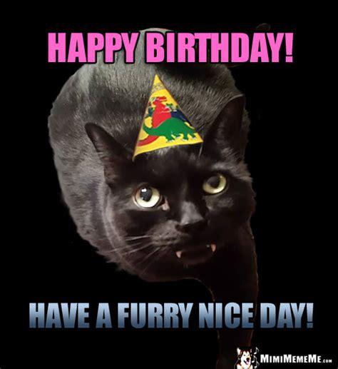 Funny Furry Memes - cat birthday fun furry happy birthday humor meow valous purr day memes pg 21 mimimememe