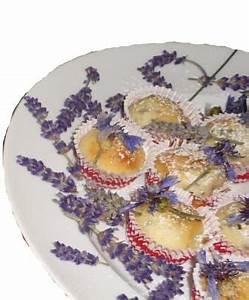 Welche Blumen Kann Man Essen : ene mene hexenk che sommer vulkanforscher wissen ist ~ Watch28wear.com Haus und Dekorationen