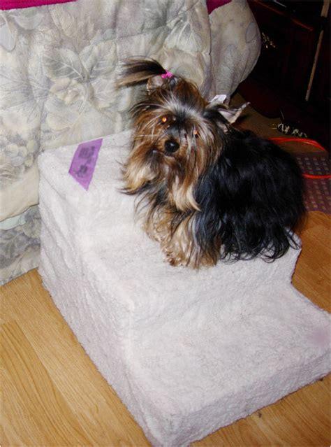 escalier pour petit chien escalier pour chien marche pour chien miniature easy step accessoire pour chien miniature mon