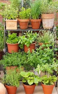 potted herb garden 17 Best ideas about Herbs Garden on Pinterest | Growing herbs, Herbs and Indoor herbs
