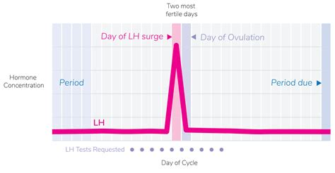 lh surge ovulation test pregnancy chart days period safe many detect avoid volume same body easyworknet