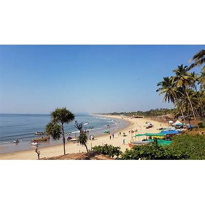 Candolim Beach by the Bougainvillea - Picture of