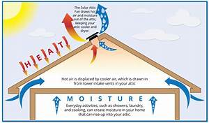 Why Roof Ventilation Matters