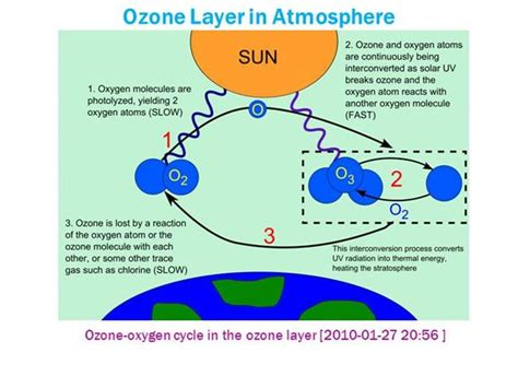 why is ozone an important form of oxygen ozone layer in atmosphere authorstream