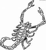 Scorpion Coloring Scorpions Printable Animals Preschool Drawing Mortal Cartoon Kombat Desert Zero Sub Giant Supercoloring Crafts Getdrawings Silhouettes sketch template