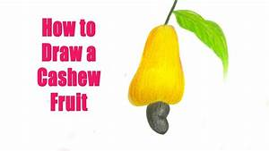 How to Draw a Cashew Fruit - YouTube Videos - YouTube
