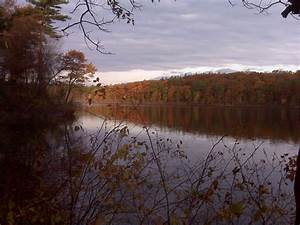 Other Thoughts: Walden Pond and Henry David Thoreau