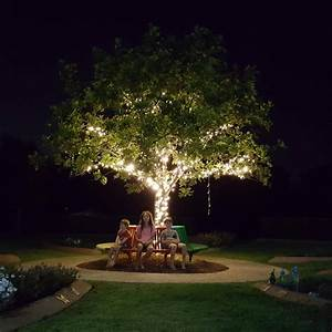 Image, Of, Commercial, Grade, Solar, Fairy, Lights, Lighting, A, Tree, In, A, Children, U0026, 39, S, Cemetary
