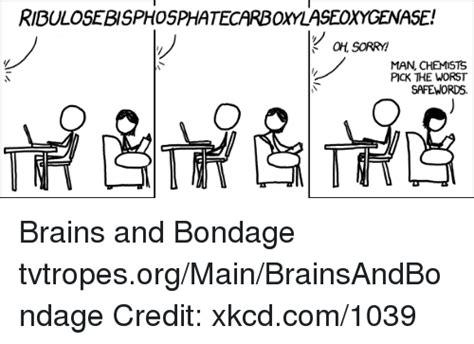 Bondage Memes - 25 best memes about safe word safe word memes