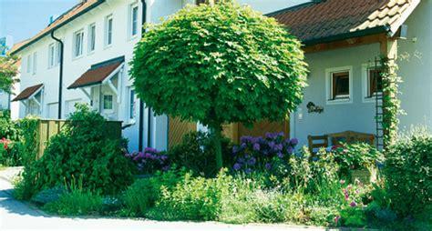 hausbaum selbstde