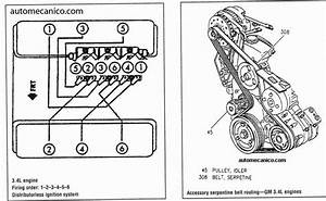 2005 Chevy Equinox Belt Diagram