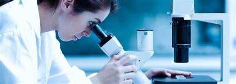 department  pathology university  maryland school