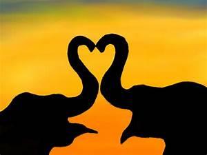 Elephant Heart by PoxAntic on DeviantArt
