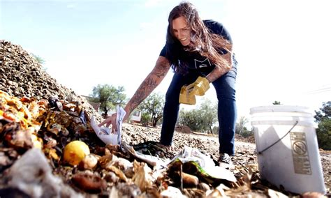 craigslist tucson farm and garden tucson seeing green with composting company